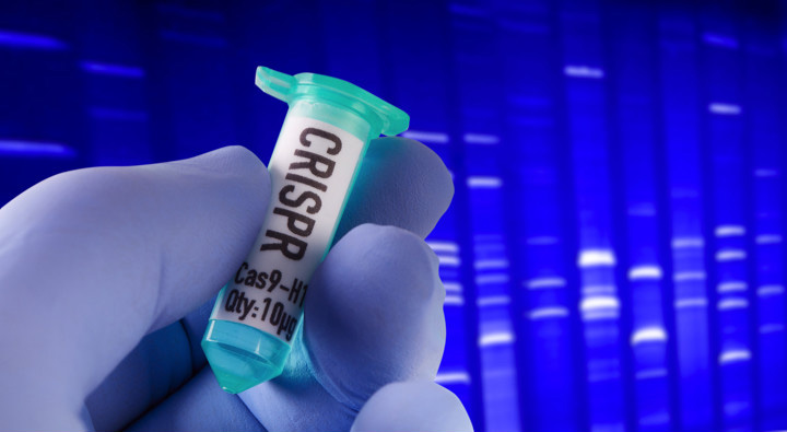 Why Now is the Golden Age of Biotechnology